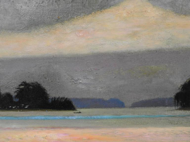 Rio Napo, Amazone - Gray Landscape Painting by René Genis