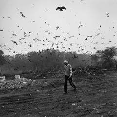 Graciela Iturbide - Señor con Pájaros