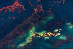Oil Spill #8