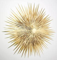 Golden Sun No. 1 Lage Metal Mirror Wall Sculpture Abstract Bronze