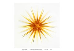 """Amber Star No. 1"" Cast Glass Wall Relief Sculpture, Yellow, Abstract"