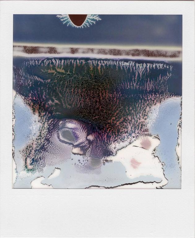 Ruined Polaroids #14