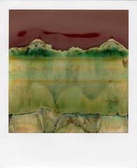 Ruined Polaroids #19
