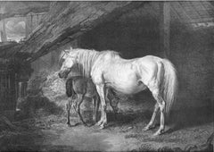 Primrose and Foal: A Brood-Mare, late the Property of his Grace the Duke of Graf