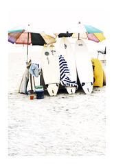 India Surf