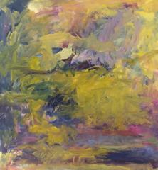 Summer Sky: Loch Eishort (o/c 66-14)