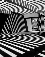 Stripes, 2010, Black & White Archival Print Photograph