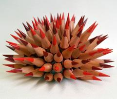 Jennifer Maestre - Crimson Sea Urchin
