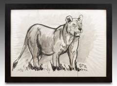 Lioness Fusain Drawing by Jean POULAIN