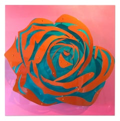 Candy Rose - Orange on Pink