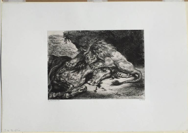 LION DEVORANT UN CHEVAL  - Lion Devouring a Horse - Print by Eugene Delacroix