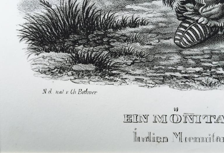 EIN MONITARI INDIANER -  2