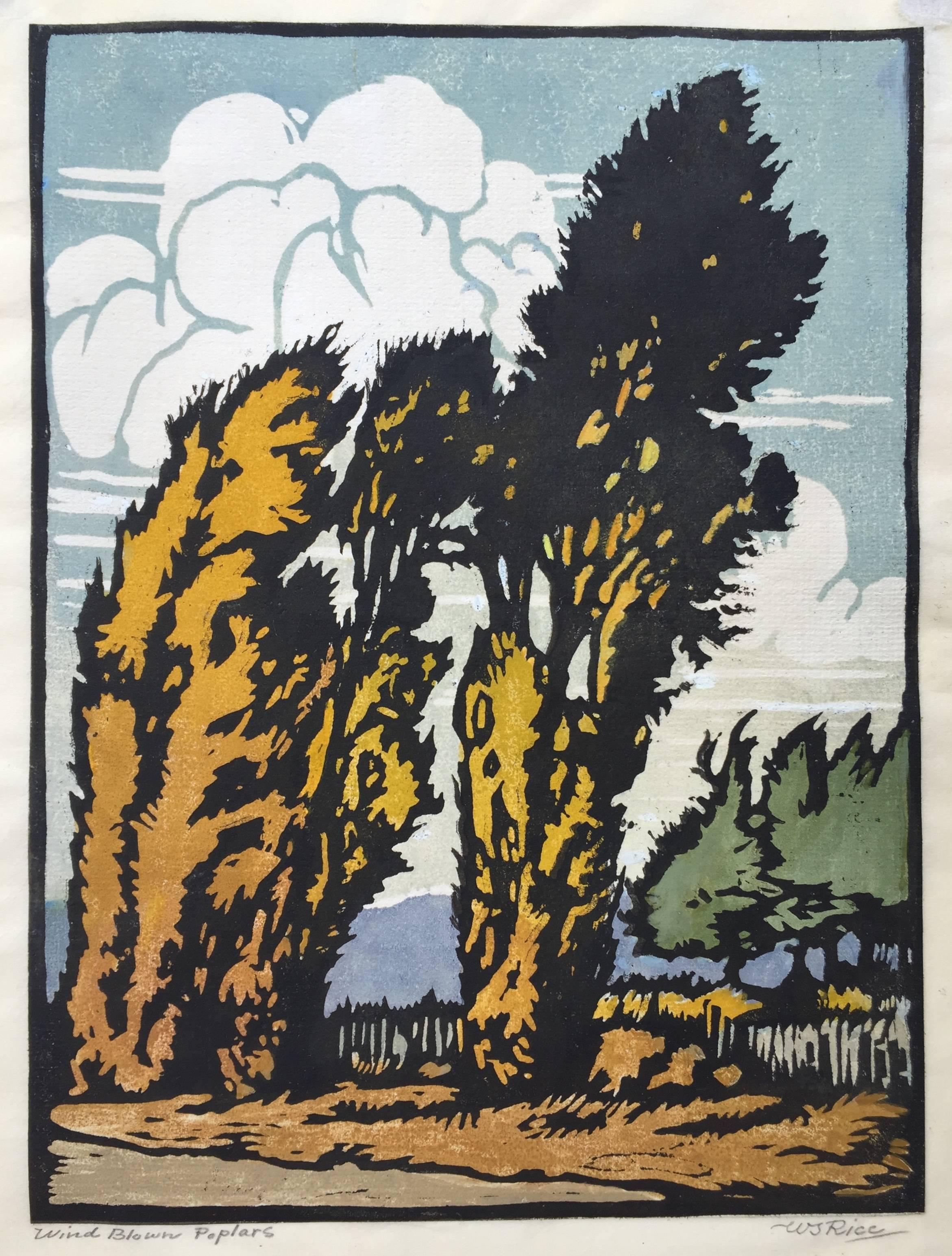Wind Blown Poplars