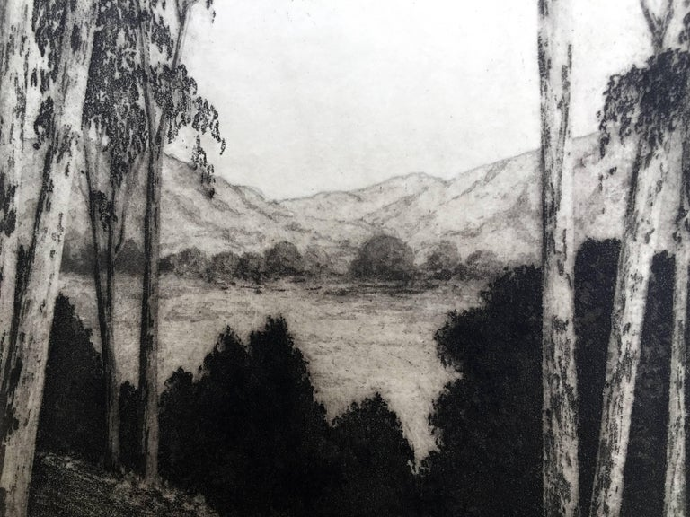 CALIFORNIA VISTA - American Realist Print by Harold Lukens Doolittle
