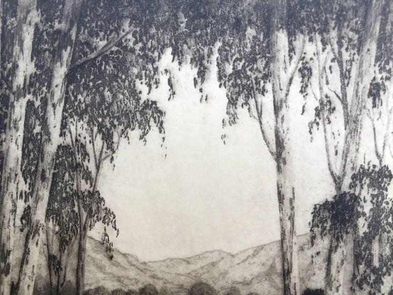 CALIFORNIA VISTA - Print by Harold Lukens Doolittle