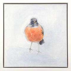 Robin (Study)