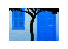 House with Blue Doors #9