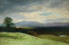 Sheep in the Hills