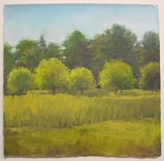 Daisy Craddock - Midday, Beck's Field