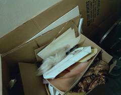 Timothy Hursley, Warhol Wig, Dye Transfer Print, 2987/1992
