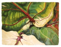 Jan Aronson, Leaves #25, botanical watercolor on paper, 2004
