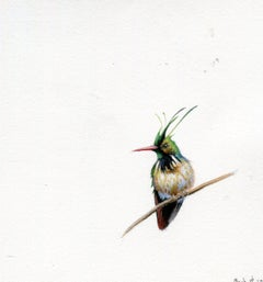 Dina Brodsky, Humming bird, Miniature realist ink, watercolor and gouache, 2017