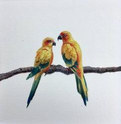 Dina Brodksy, Parrots, realist gouache on paper miniature, 2018