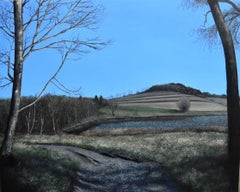 Eileen Murphy, This Steeply Sloping Hour, realist oil paint on panel landscape