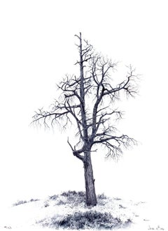 Dina Brodsky, Tree No. 103, June 15, 2016, Landscape drawing with ink on paper