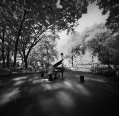 Washington Sq Park - NYC Pinhole Series