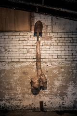 Dinosaur Bone Fertility Shovel