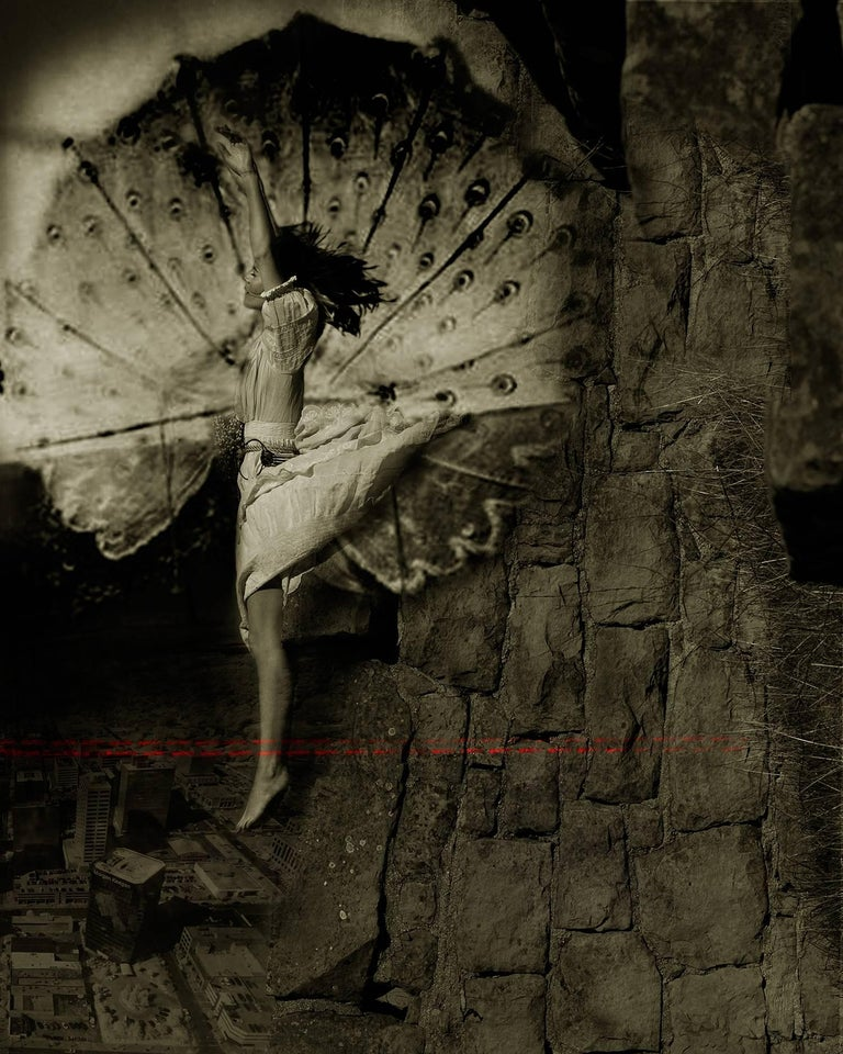 Ann George The Descent Of Man Photograph At 1stdibs border=