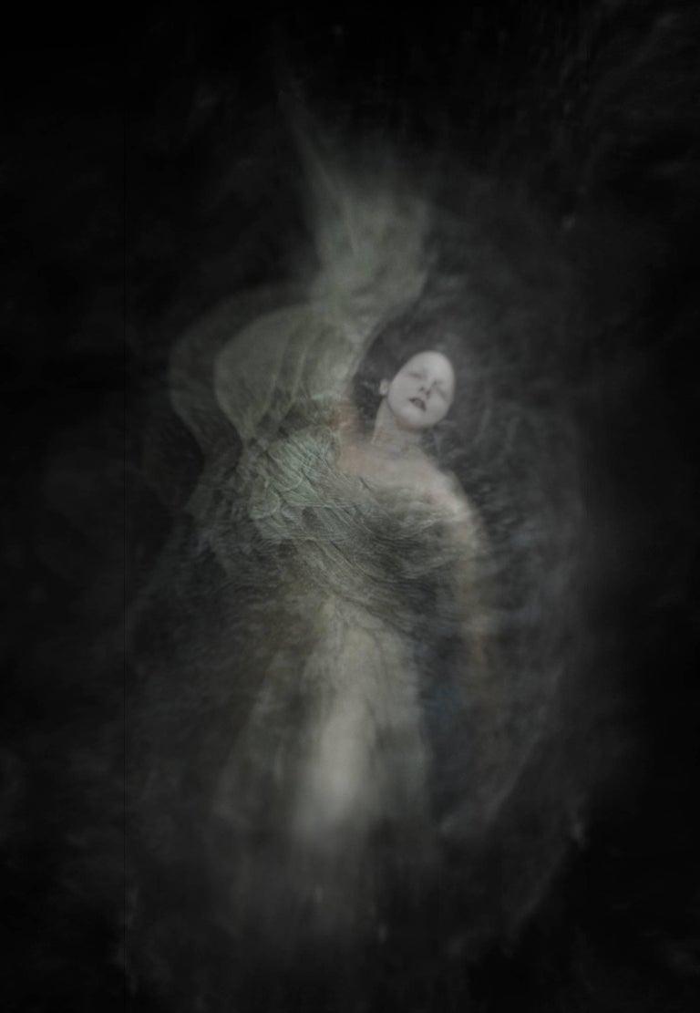 Ann George - Wisteria 1