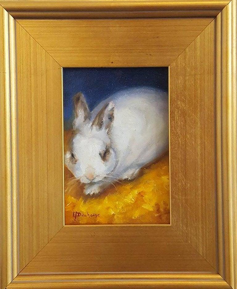 Benny the Fluffy Bunny 2