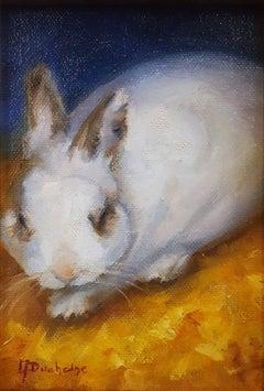 Benny the Fluffy Bunny