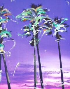 Palms Original #3