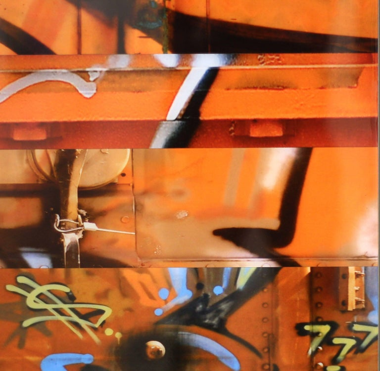 Sun King (diptych) For Sale 5