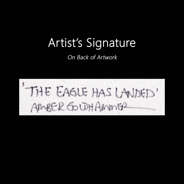 The Eagle Has Landed - Large Original Black and White Artwork For Sale 5