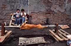 Arlene Gottfried - Summer Afternoon, Lower East Side, NY