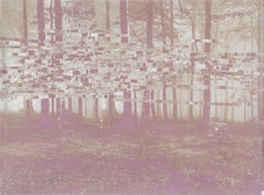 untitled - Warm Toned Woodland Landscape Photo Transfer on Mylar