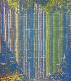 Vicarious - abstract landscape forest photo transfer collage on mylar