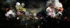 Song for dead heroes #1 Floral abstract landscape dark color photo composition