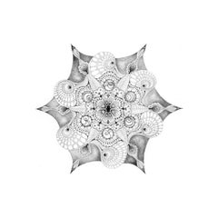 14 Years - Mandala Black and White Contemporary Pencil Drawing With Seashell