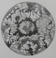 Flowing Greys - Round Shaped Floral Black and White Abstract Pencil Drawing
