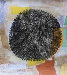 Untitled (American Elm, estimated age 83 year)