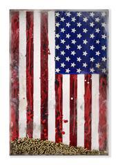 SPENT - Original, American Flag, Political Piece, Bullets, Spent shell casing