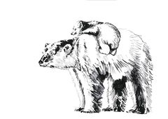 Love me Save Me, POLAR BEAR; portion of proceeds benefit WWF, signed & dedicated