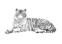 Love Me Save Me Tiger, portion of proceeds benefit WWF; signed and dedicated