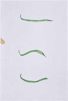 BALDESSARI. Choosing: Green Beans