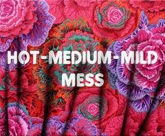 Hot- Medium-Mild- Mess, Adam Mars, Text Based Painting, Spray Paint, Acrylic